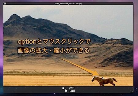 Mac Quick LookでPDFや画像ファイルを拡大・縮小表示する方法 Inforati 1