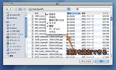 Macの「開く・保存」ダイアログで、リスト表示の項目を増やす隠れ技 Inforati 1