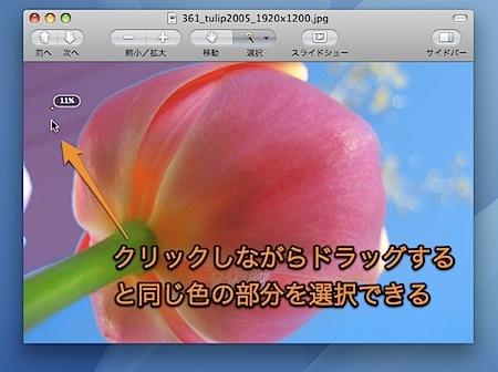Macのプレビュー.appで写真から似た色の部分のみ選択する方法 Inforati 2