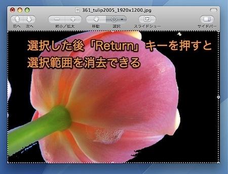 Macのプレビュー.appで写真から似た色の部分のみ選択する方法 Inforati 3