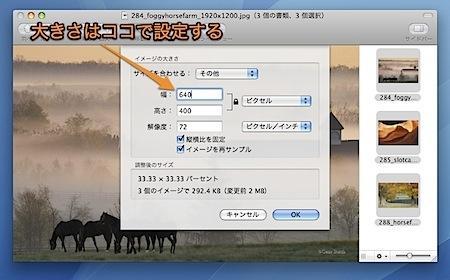 Macのプレビュー.appで複数の写真を拡大・縮小する方法 Inforati 2