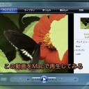 Windows Media Playerの動画を、MacのQuickTime Playerで再生する方法